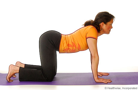 Picture of a woman in step three of the yoga cat cow pose